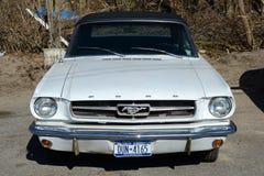 Автомобиль с откидным верхом 1964 Ford Мustang Стоковые Изображения RF