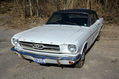 Автомобиль с откидным верхом 1964 Ford Мustang Стоковые Изображения