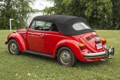 Автомобиль с откидным верхом Volkswagen Beetle Стоковое Изображение RF