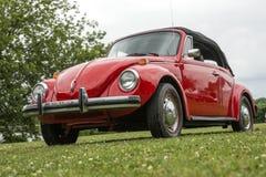 Автомобиль с откидным верхом Volkswagen Beetle Стоковые Фото