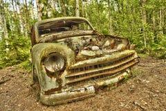Автомобиль утиля в древесинах Стоковые Изображения RF