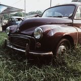 Автомобиль Wolkswagen Стоковые Фотографии RF