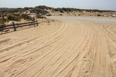 Автошина автомобиля печатает на дороге водя для того чтобы пристать к берегу предусматриванный в песке стоковое изображение