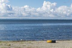 Автошина автомобиля на одичалом beach1 Стоковое Изображение