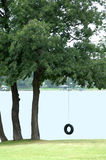 автошина качания Стоковая Фотография RF