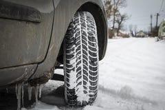 Автошины зимы Стоковое Фото