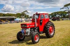 Аграрная выставка стоковые фотографии rf
