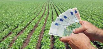 Аграрная принципиальная схема стоковые фото
