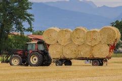 Аграрная работа Стоковое фото RF