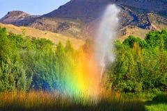 Аграрная радуга спринклера полива стоковые фотографии rf