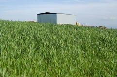 аграрное здание самомоднейшее Стоковое Изображение