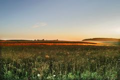 аграрное поле осени Стоковые Фото