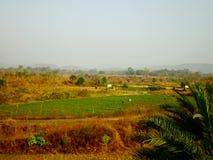 аграрное поле стоковое изображение rf