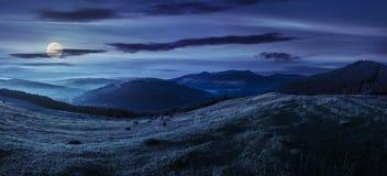Аграрное поле в горах на ноче Стоковые Фотографии RF