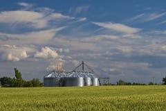 аграрное силосохранилище Стоковые Изображения RF