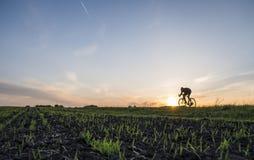 Аграрные поля и человек едут велосипед в заходе солнца Ехать велосипед на заходе солнца уклад жизни принципиальной схемы здоровый Стоковые Фотографии RF