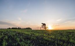 Аграрные поля и человек едут велосипед в заходе солнца Ехать велосипед на заходе солнца уклад жизни принципиальной схемы здоровый Стоковое Изображение