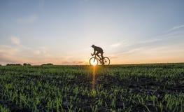 Аграрные поля и человек едут велосипед в заходе солнца Ехать велосипед на заходе солнца уклад жизни принципиальной схемы здоровый Стоковая Фотография