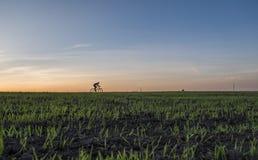Аграрные поля и blury человек едут велосипед в заходе солнца Ехать велосипед на заходе солнца уклад жизни принципиальной схемы зд Стоковые Фото