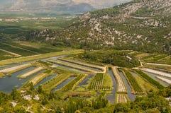 аграрные поля Стоковые Фото
