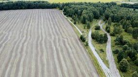 Аграрные пшеничное поле и лес в осени r акции видеоматериалы