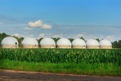 Аграрные силосохранилища - экстерьер здания, хранение и засыхание зерен, пшеница, мозоль против голубого неба с полями риса Стоковое Фото