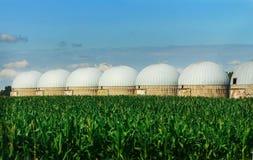 Аграрные силосохранилища - экстерьер здания, хранение и засыхание зерен, пшеница, мозоль против голубого неба с полями риса Стоковое Изображение RF