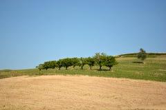 Аграрный итальянский ландшафт Стоковые Фотографии RF