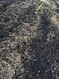 Аграрный край в предыдущей осени Стоковая Фотография RF