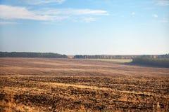 аграрный край Стоковые Изображения