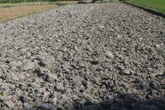 аграрный край Стоковое фото RF
