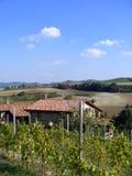 аграрный ландшафт стоковое фото rf