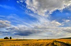 аграрный ландшафт Стоковые Фото