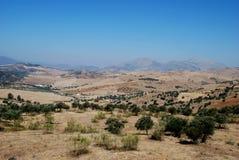 Аграрный ландшафт, Andalusia, Испания. Стоковая Фотография