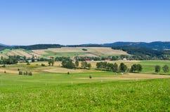 Аграрный пейзаж Стоковые Фото