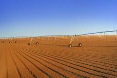аграрный спринклер поля Стоковое фото RF