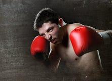 Агрессивный бокс тени тренировки человека бойца при красные воюя перчатки бросая порочный левый пунш крюка Стоковая Фотография