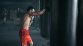 Агрессивный профессиональный боец тренирует с грушей, нанося яростное дуновение Чемпион приниманся за акции видеоматериалы