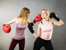 2 агрессивных женщины имея бой бокса Стоковые Фотографии RF