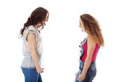 2 агрессивных женщины кричащей к каждому otcher Стоковое Изображение RF