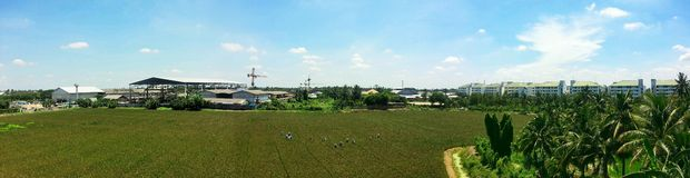 Агроном в Таиланде Стоковые Изображения