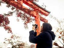 Азиатская девушка принимает фото с красным кленовым листом с солнечностью и нежностью Стоковые Фотографии RF