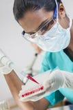 Азиатская женская лаборатория ученого & пробы крови Стоковое Изображение