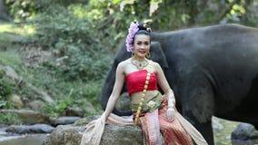 Азиатская женщина с слоном в заводи, Чиангмае Таиланде сток-видео