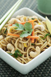 азиатская лапша тарелки Стоковая Фотография RF