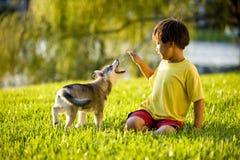 азиатская трава мальчика играя детенышей щенка стоковое фото