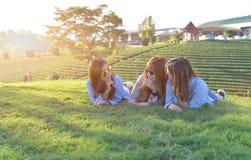 азиатские девушки кладя на зеленую траву под солнечным светом, w Стоковая Фотография RF