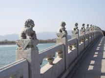 Азиатские китайцы, Пекин, летний дворец, 17 продырявливают мост, каменный лев Стоковые Изображения RF