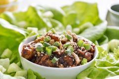 Азиатские обручи салата с омаром и анакардиями Стоковое Фото