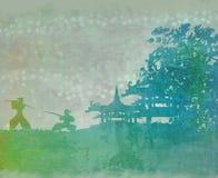 азиатские самураи ландшафта Стоковые Изображения RF